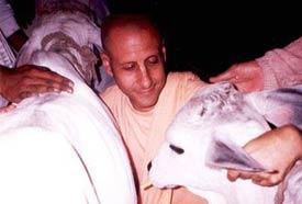 Radhanath Swami On Service Attitude